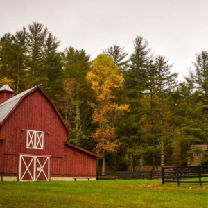 This is a red barn on a grassy lot with fall trees behind it.